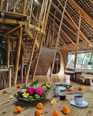 Stunning Bamboo homes and destinations
