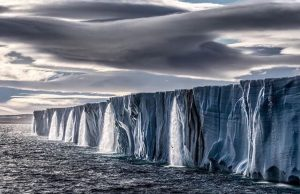 Antarctica is crawling with weirdness