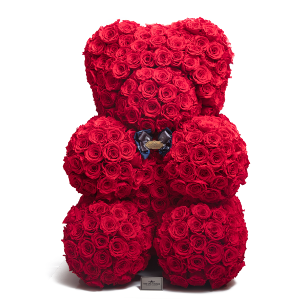 Rose Teddy bear   Slaylebrity