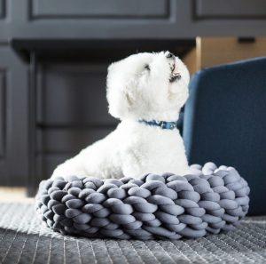 Braid Dog Bed