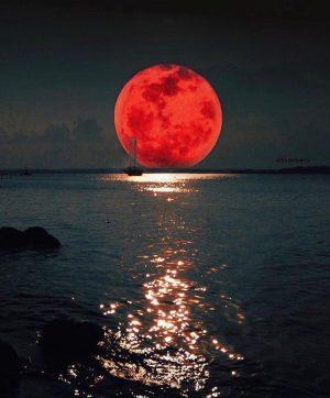 Rare Super Blue Blood Moon Eclipse Thrills Millions Around the World