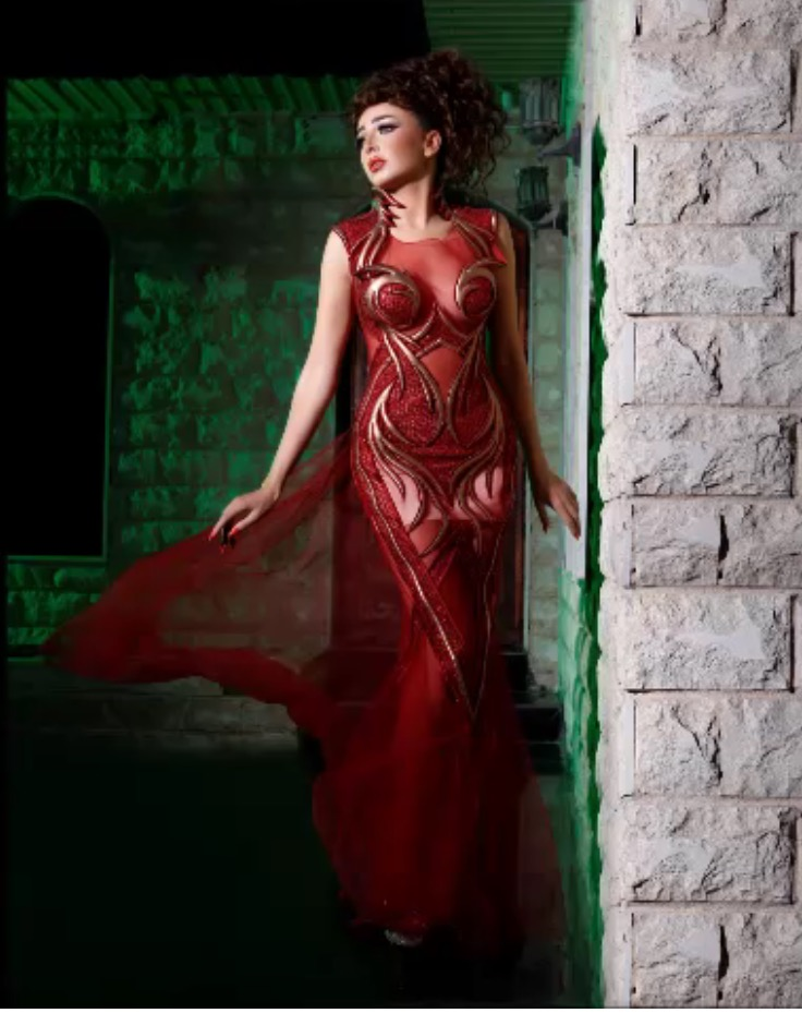 The Allure of Evening Gown