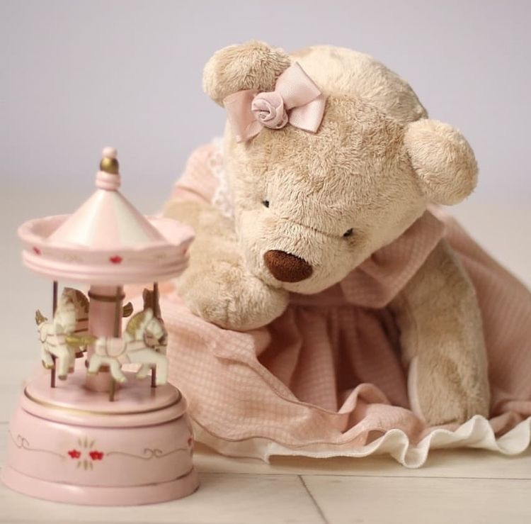 Luxury plush sweet teddy bear