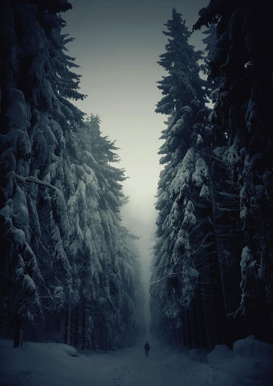 The extraordinariness of Nature
