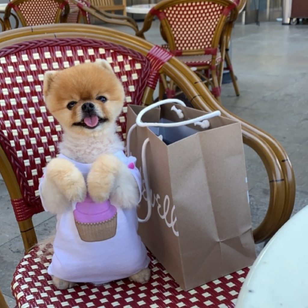 Who is Jiff Pom?