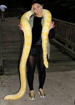 WTF Beyonce had a Pet Snake